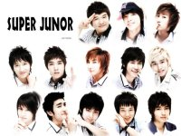 super junior cute
